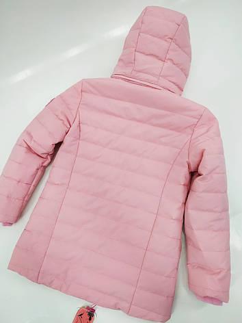 Демісезонна курточка для дівчинки 134-164 зростання, фото 2