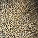Оборудование для производства корма для домашних животных, фото 5