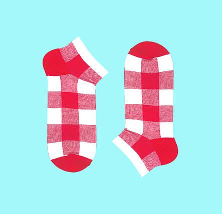 Короткие носки в клетку PINK-BEIGE TARTAN, фото 2