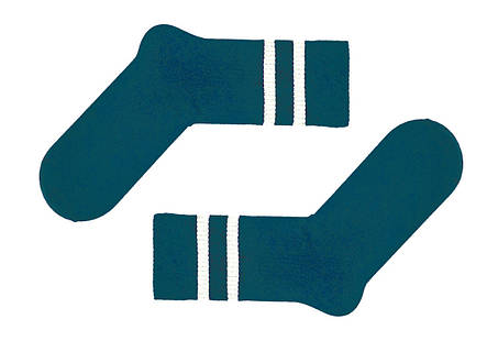 Носки украинского производителя SOX цвета морской волны с бежевыми полосками, фото 2