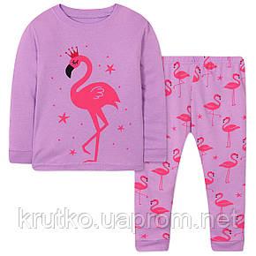 Пижама Фламинго Wibbly pigbaby, фото 2