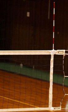 Антенны волейбольные