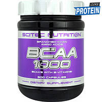 Аминокислоты bcaa Scitec Nutrition BCAA 1000 (300 caps)