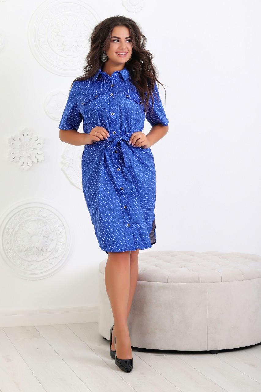Платье-рубашка с поясом БАТАЛ, арт 101/2, ткань коттон,  ярко-синее в горох