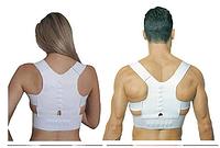 Магнитный корсет для спины Pover Magnetic Кипарис