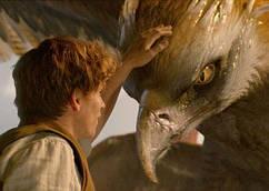 Картина 60х40 см Фантастические звери и места их обитания Грифон