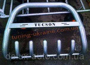 Защита переднего бампера кенгурятник крашенный низкий с надписью  D60 на  Hyundai Tucson 2004-2009