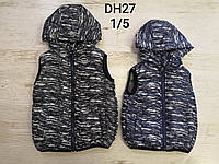 Безрукавки на меху для мальчика оптом, Sincere, 1-5 лет, арт. DH27, фото 1