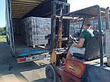 Топливные брикеты Пини Кей, Pini Kay в термоупаковках. Опт 22т, фото 4