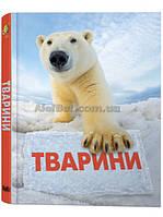 Енциклопедія для дітей / Тварини. Подарункове видання / Країна Мрій