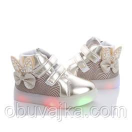 Демисезонная обувь оптом Ботинки от фирмы BBT для девочек оптом(21-26)