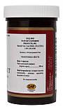 Блэк Волнат Черный грецкий орех НСП Black Walnut NSP - 100 кап - NSP, США, фото 2