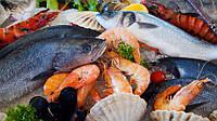 Топ 5 найкорисніших сортів риби