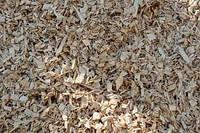 Щепа топливная древесная (сосна)