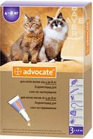 Advocate *Адвокат* Bayer  капли для кошек от 4 кг до 8 кг (1 пипетка )
