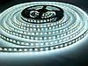 Светодиодная лента SMD 3528 120 LED/m IP20 Premium White MOTOKO