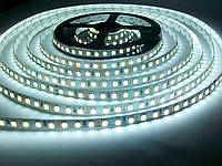 Светодиодная лента SMD 3528 120 LED/m IP20 Premium White MOTOKO, фото 1