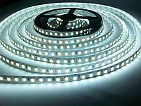 Светодиодная лента SMD 3528 120 LED/m IP20 Premium White