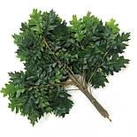 Ветка дуб зеленый  60 см ( 6 шт в уп), фото 2