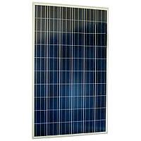 Солнечная панель SUNTECH 275W (STP275-20/Wfw)