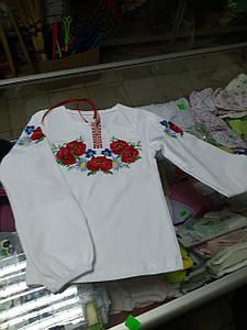 Вишиванка трикотажна блуза для дівчинки р. 92 - 140