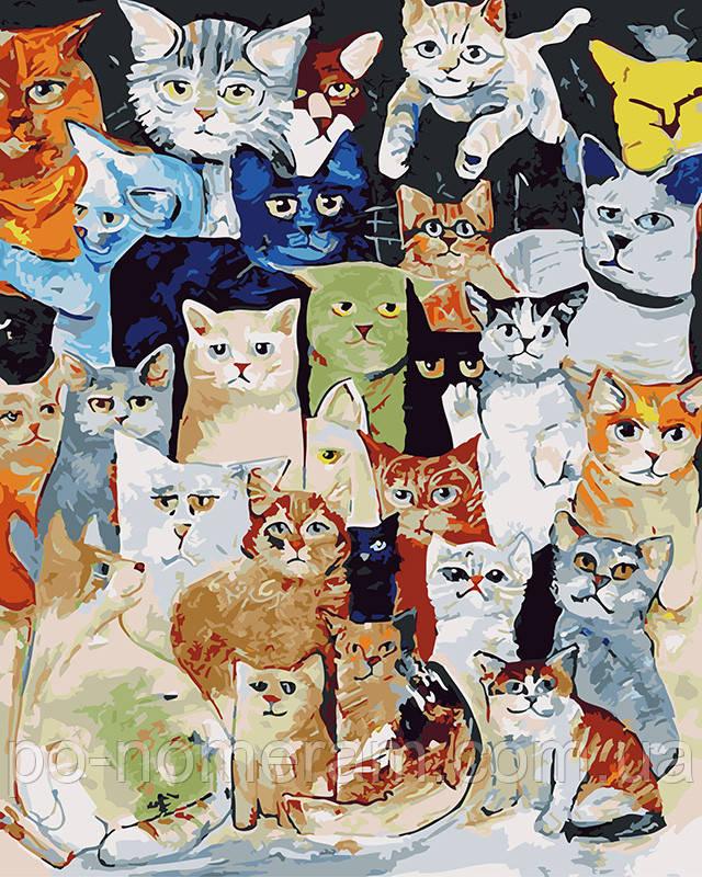 Картина раскраска по номерам без коробки Задумчивые коты ...