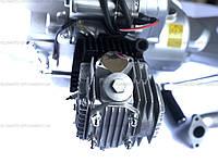 Двигатель, мотор, Delta-110 кубов, механика, Alfa-lux