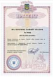 Универсальная спасательная лестница Uniladder 1L-1000 Silver (vol-66), фото 5