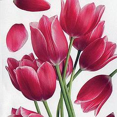 Наклейка, тюльпан, цветы,  интерьерная, декупаж, тюльпаны, Декор №1