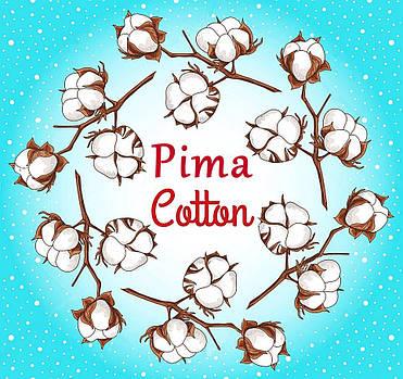 Pima cotton - все секреты раскрыты!