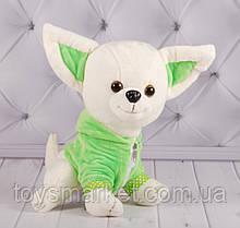 """М'яка іграшка собака """"Chi Chi Love"""", Чи Чи Лав, плюшева собака"""