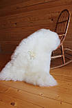 Шкура овечья натуральная белая супер-мягкая кожа, фото 3