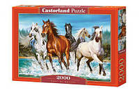 "Пазлы ""Табун лошадей"", 2000 элементов С-200702"