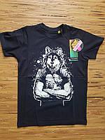 Подростковая футболка с рисунком волка