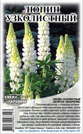 Семена люпин узколистный на сидераты 1 кг, Семена Украины
