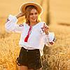 Вышиванки женские  блуза - Жар Птица, фото 6