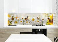 Кухонный фартук белые Нежные ромашки (скинали фотопечать наклейки для кухни, цветы бабочки, оклеивание стен) 600*2500 мм