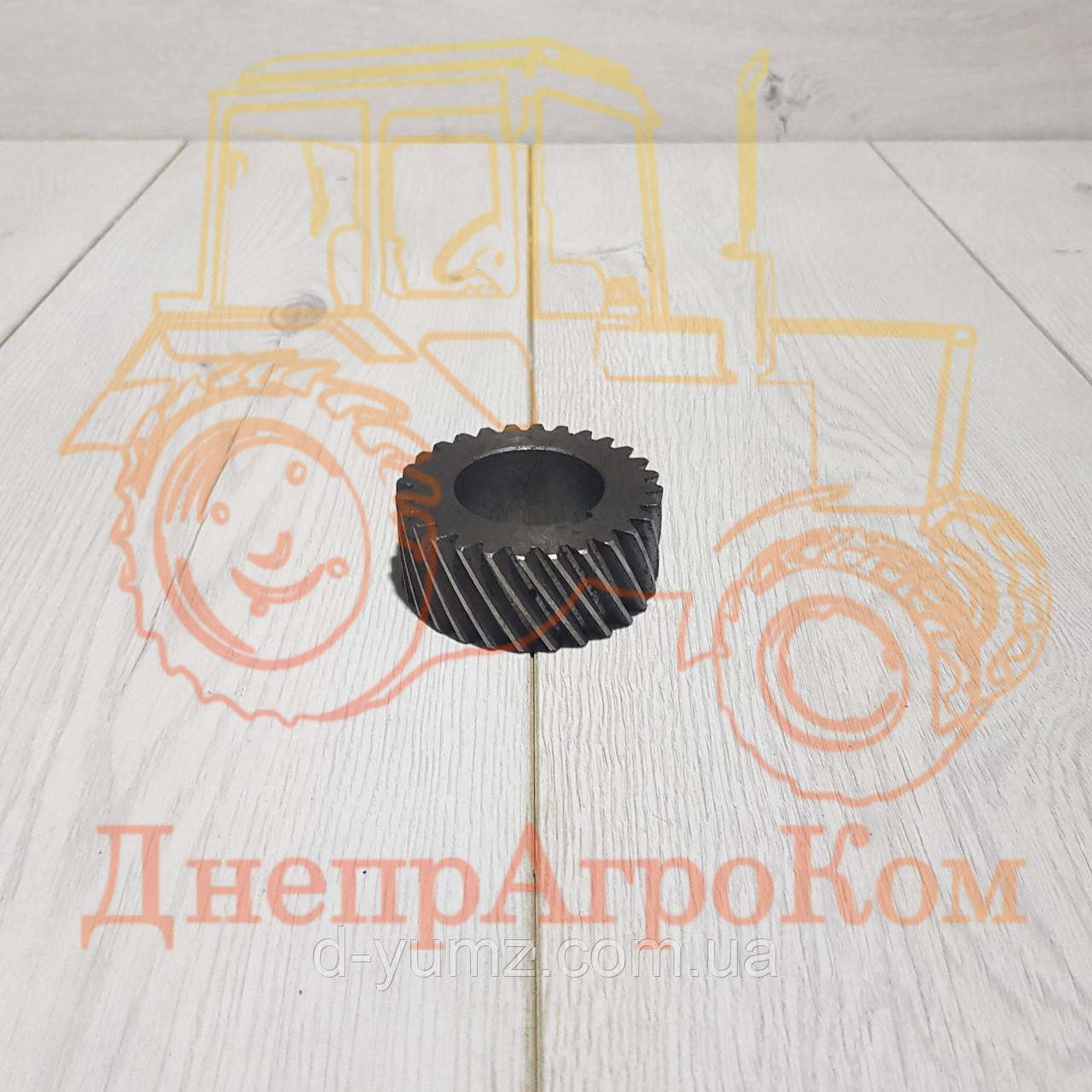 Шестерня коленвала ЮМЗ Д-65   Z=28   Д03-005