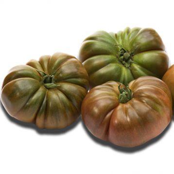 Семена томата Браун Кой (коричневый) F1, Yuksel seeds 500 семян | профессиональные