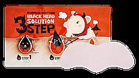Набор 3 шага для удаления черных точек ELIZAVECCA Milky Piggy Black Head Solution 3 Step, 3 по 6 мл