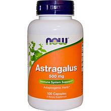 """Астрагал NOW Foods """"Astragalus"""" для укрепления иммунитета, 500 мг (100 капсул)"""