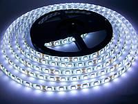 Світлодіодна стрічка SMD 5050 60 LED/m IP 65 Standart White, фото 1