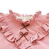 Детское платье из микровельвета размер 98., фото 2