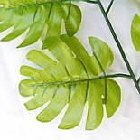 Лист монстеры зеленый 43 см  (20 шт. в уп), фото 2