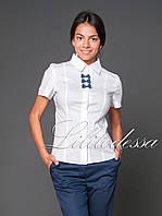 Рубашка с бантиками белый, фото 1