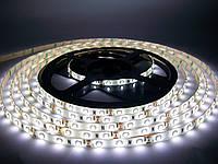 Светодиодная лента SMD 3528 60 LED/m IP65 Standart White герметичная, фото 1