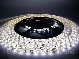 Светодиодная лента SMD 3528 60 LED/m IP65 Standart White герметичная
