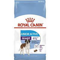 Royal Canin Giant Junior Active 15 кг - Корм для щенков с высокими энергетич. потребн. от 8 до 18/24 мес