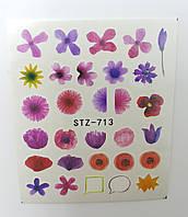 Наклейка для ногтей STZ-713