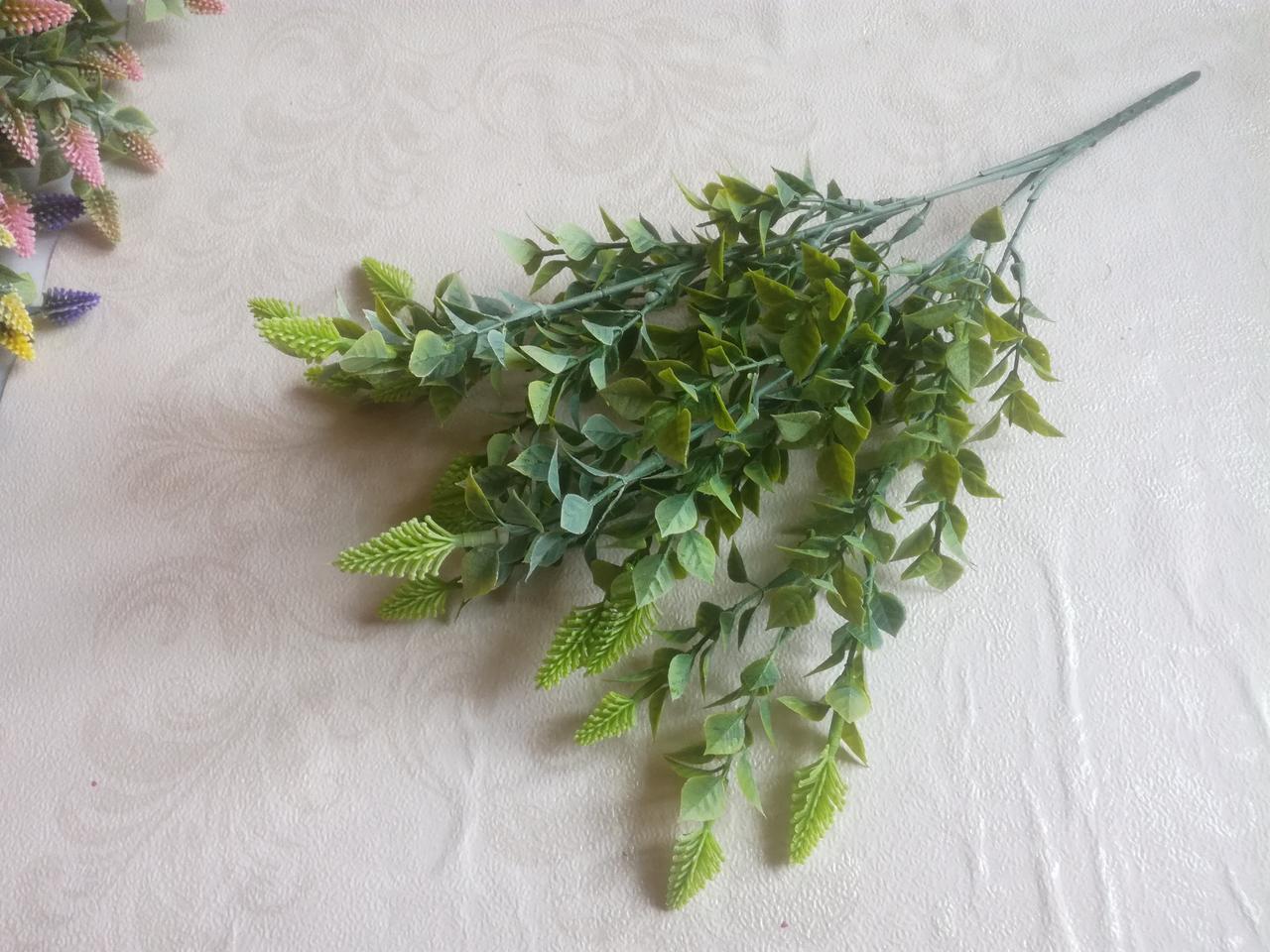 Букет фаляриса, зеленый